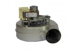 39846780 Вентилятор (турбина) дымоудаления Ferroli DOMIproject D, Domitech D (36602070)